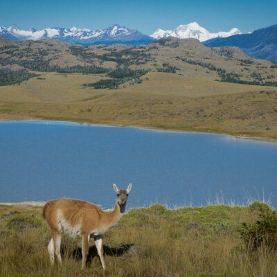 Paisaje del sector Valle Chacabuco, con una vista al Monte San Lorenzo.